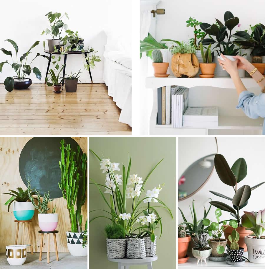 Zo maak je thuis een botanisch interieur homezy blog for Interieur bloggers