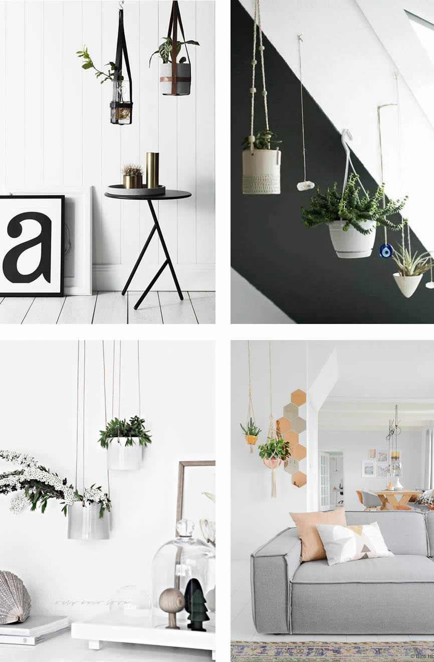 collage hanging baskets
