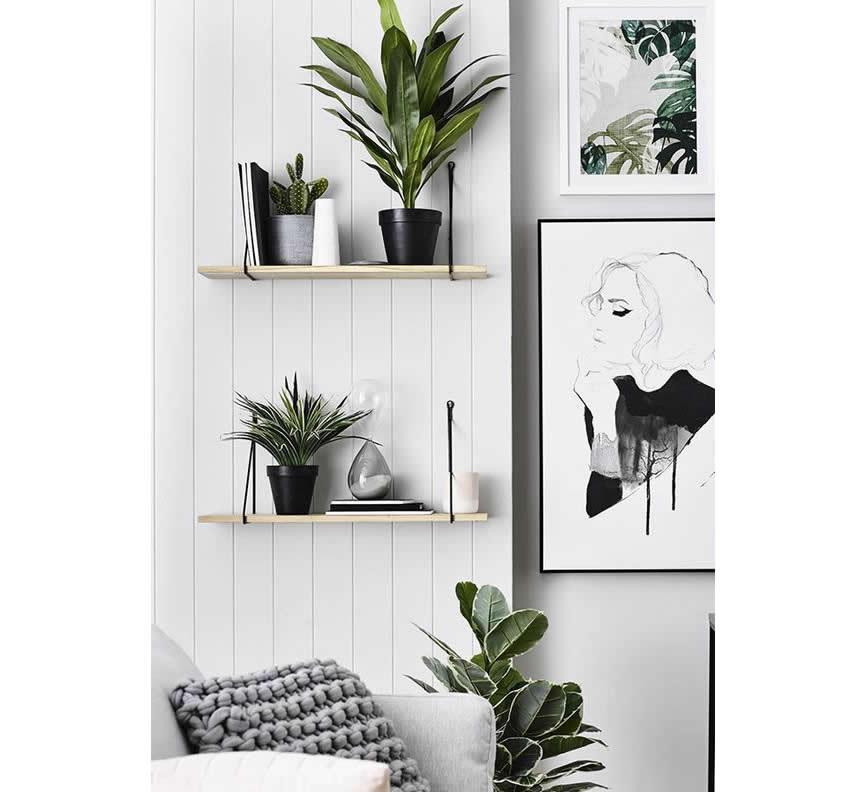 Planten op de boekenplank