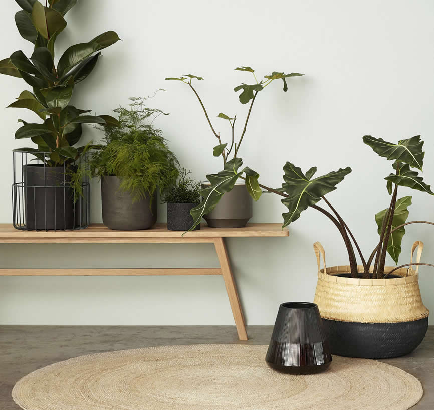 Planten en potten met mand en vloerkleed van jute, Hubsch